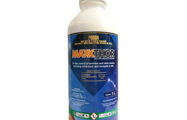 Maxxthor