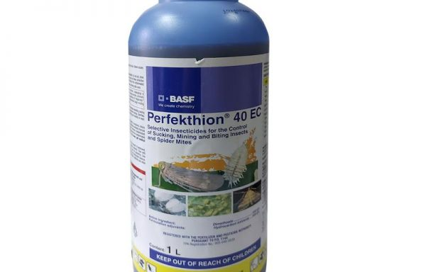 Perfekthion 40 EC Selective Insecticide