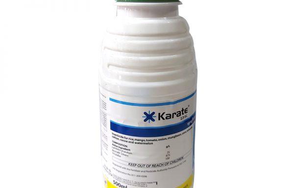 X-Karate